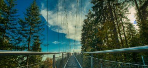 Die 180 Meter hohe Hängebrücke 'Wildline' in Bad Wildbad